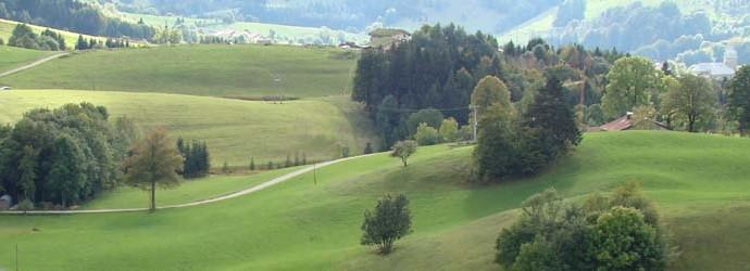 Paysage de La Pesse (Jura)