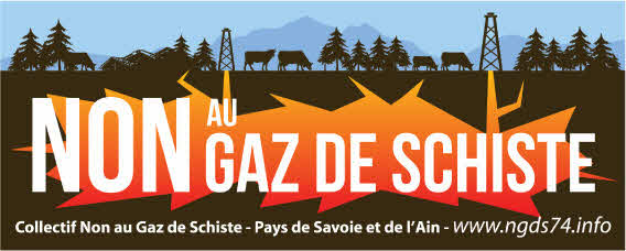 Logo NGDS 74 - 01
